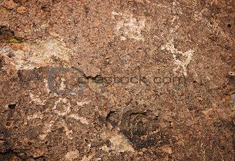 Red Canyon Petroglyphs along Fish Slough Road in Bishop, CA duri
