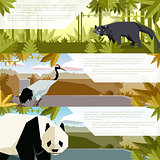 Set of flat banners with asian animals