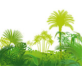 Tropical exotic plants illustration