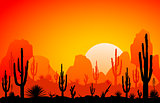 Desert, the sunset