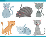 cute cats and kittens characters set