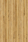 seamless texture of  plywood side section