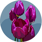 Bouquet of five lilac tulips on a gray background