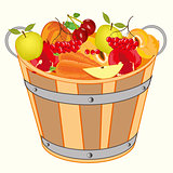 Bucket with fruit and berry