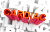 Cardiac - Medicine Concept. 3D rendering