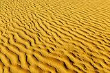 Sands of the desert.Sand dunes at sunset in the Sahara Desert