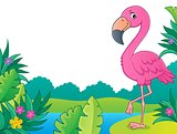 Flamingo topic image 3