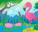 Flamingo topic image 4