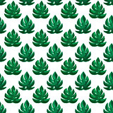 Monstera Leaf Seamless Pattern