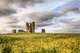 Church ruin landscape in yellow crops