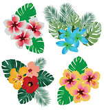 Vector Tropical Flowers