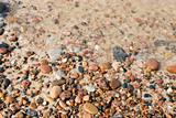 Seashore  background