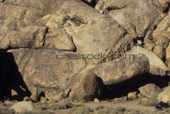 fish image in rock formation