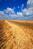 oblique field