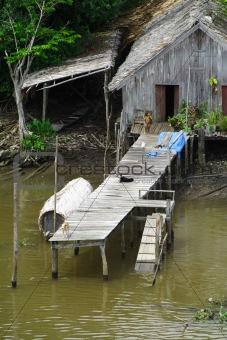 Amazonia Lifestyle