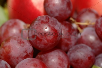 Macro Red Grapes