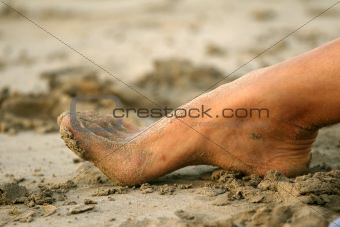 Foot in Sand
