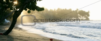 Beach in Caribbean by Sunset