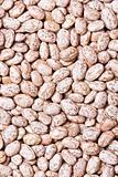 beans background macro