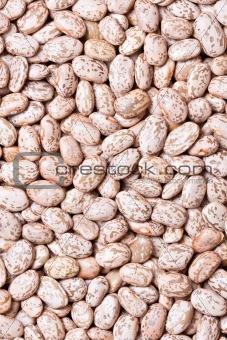 beans background macro