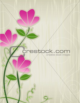 Pink Flower Abstract