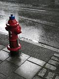 fire hydrant on wet street