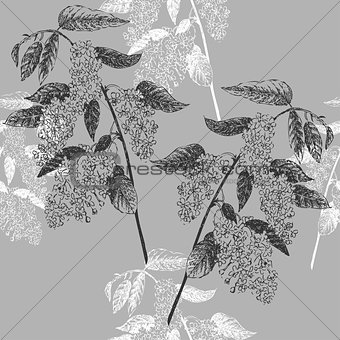Seamless Pattern with Bird Cherry. Sketches of spring flowers