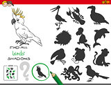 educational shadows game with birds characters
