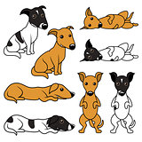 Cartoon doggy vector illustration set