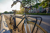 Green retro bicycle with brown leather seat and flare light