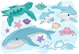 Sea Ocean Tropical Summer Vector Colorful Illustration SEA CREATURES