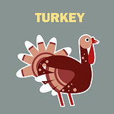 Domestic bird turkey simple
