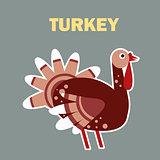 Domestic bird turkey simple