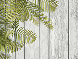 3D fern leaves on a white wooden texture
