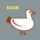 Domestic bird duck simple