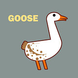 Domestic bird goose simple