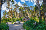 National natural park in Sintra Portugal