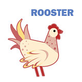 Domestic bird rooster isolated