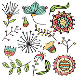 Doodle color flowers and leafs collection