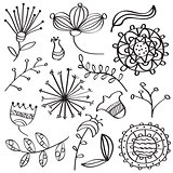 Doodle outline flowers and leafs collection for coloring