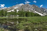 Val Ferret in spring landscape