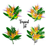Tropical vector floral set