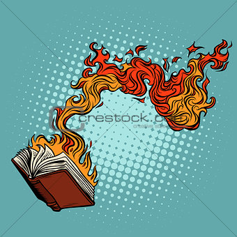 the book burns. destruction of knowledge and culture