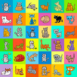 pattern design with cartoon cat characters