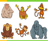 monkeys animal characters cartoon set