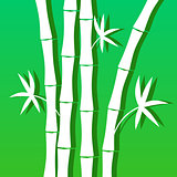 Blue green background with bamboo for banner decoration leaflets