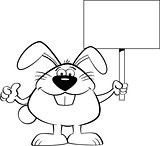 Cartoon Rabbit Holding a Sign and Giving Thumbs Up