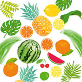 Various fresh fruits illustration