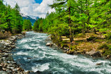 river among the trees in Aosta Valley