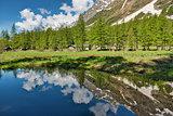 Little lake in Ferret valley